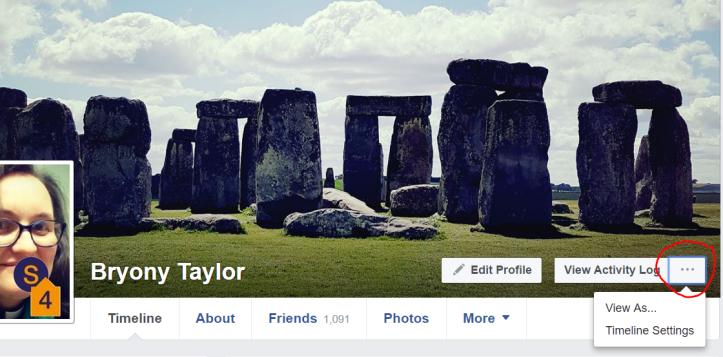 Facebook view as