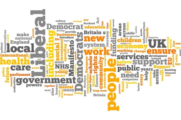 Libdem manifesto 2017