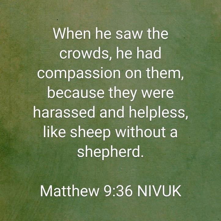 Matt 9 36